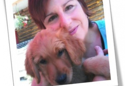 Fonds d'aide aux animaux « Fidèle Canin »